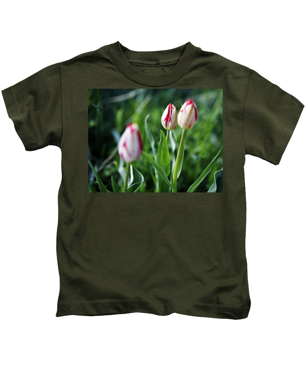 Flower Kids T-Shirt featuring the photograph Striped Tulips In Spring by Marilyn Hunt