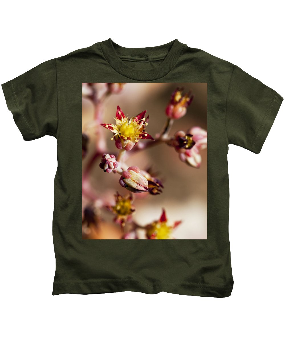Cactus Kids T-Shirt featuring the photograph Succulent Flowers by Kelley King