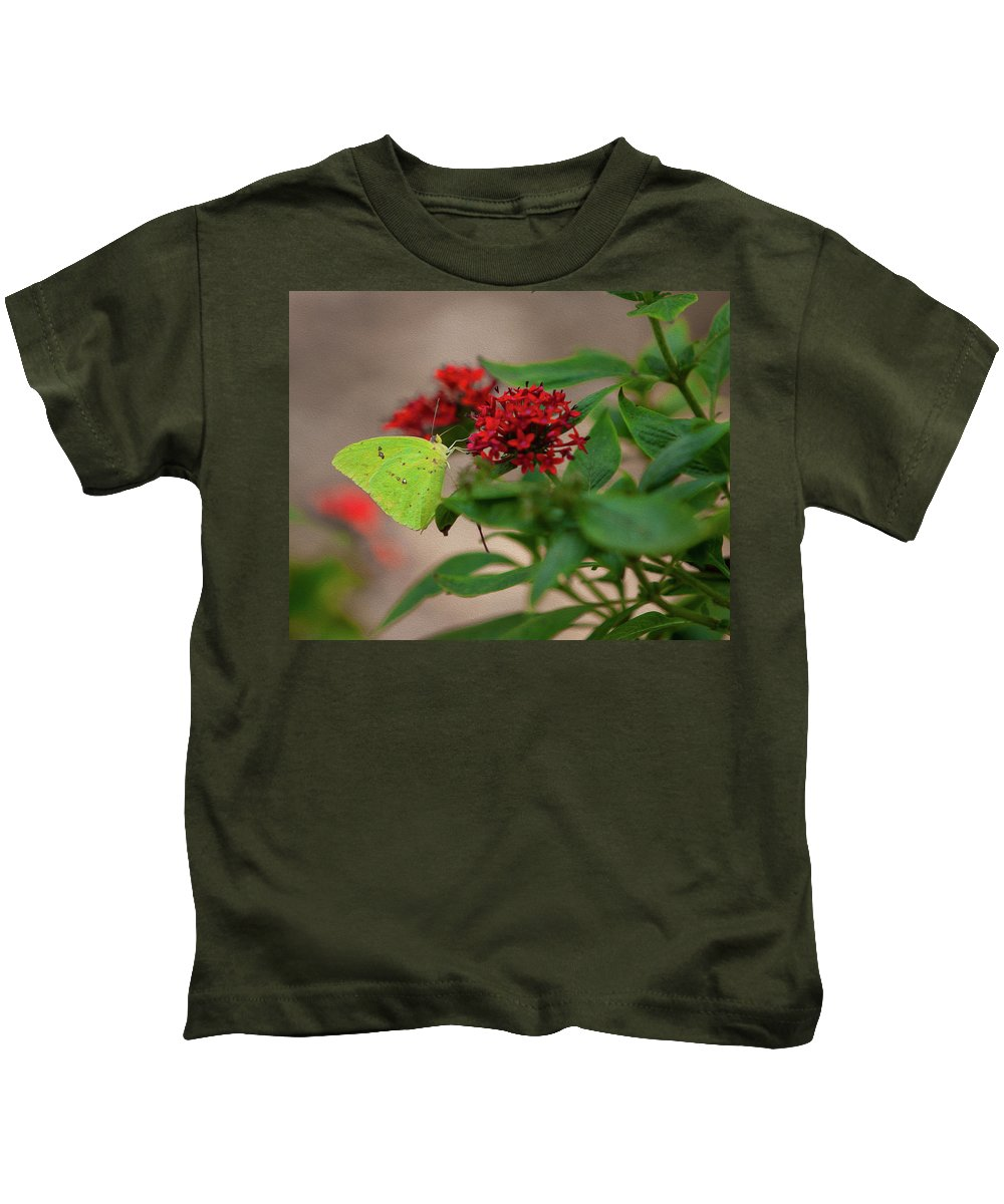 Butterfly Kids T-Shirt featuring the photograph Sulphur Butterfly On Red Flower by Spencer Studios