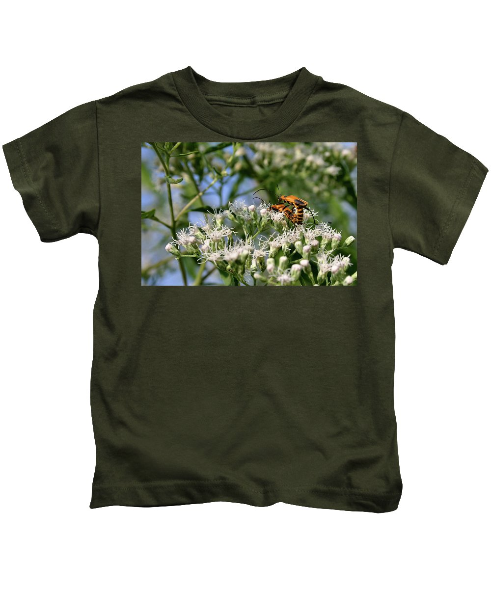 Beetle Kids T-Shirt featuring the photograph Summer Lovin by Kristin Elmquist
