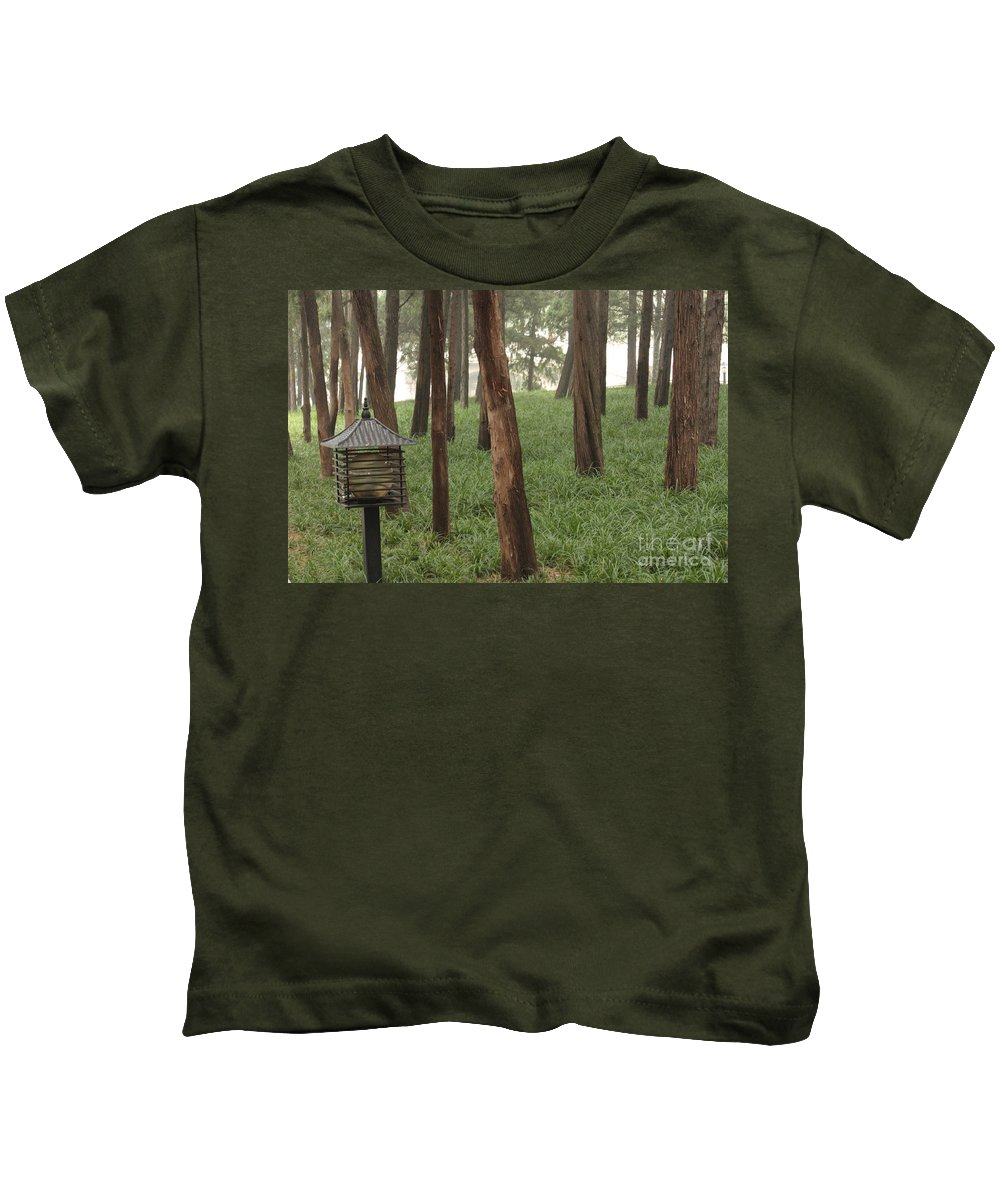 Summer Palace Kids T-Shirt featuring the photograph Summer Palace Trees And Lamp by Carol Groenen