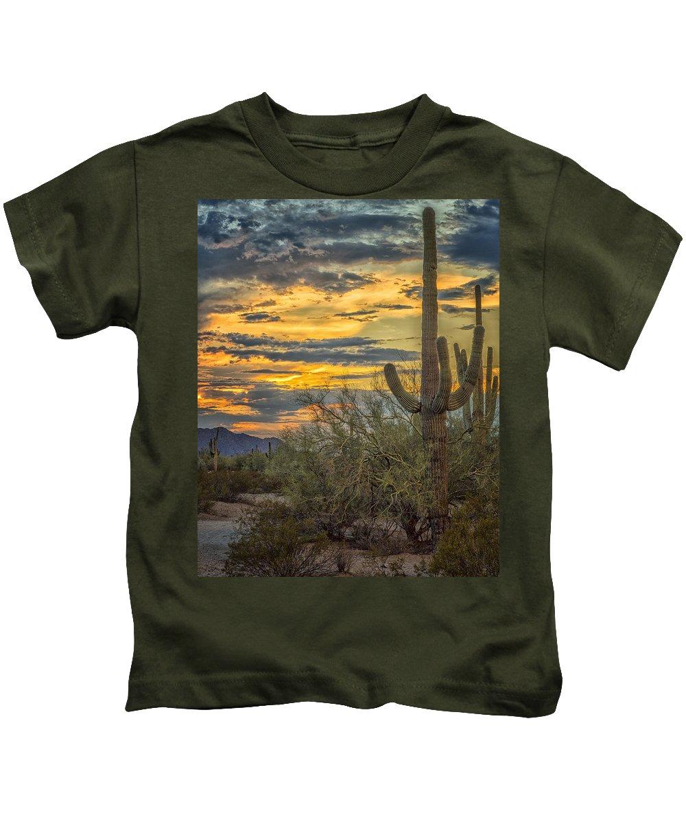Desert Cactus Kids T-Shirt featuring the photograph Sunset Approaches - Arizona Sonoran Desert by Jon Berghoff