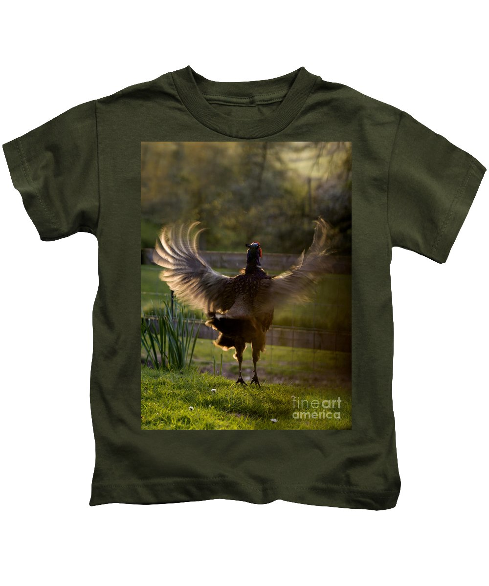 Pheasant Kids T-Shirt featuring the photograph Sunset In His Wings by Angel Ciesniarska