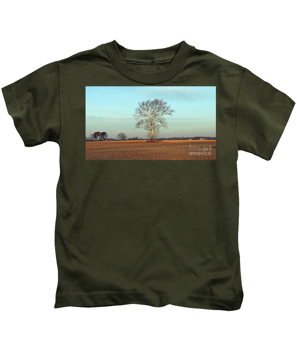 Tree Kids T-Shirt featuring the photograph Sunshine Sycamore by Steve Gass