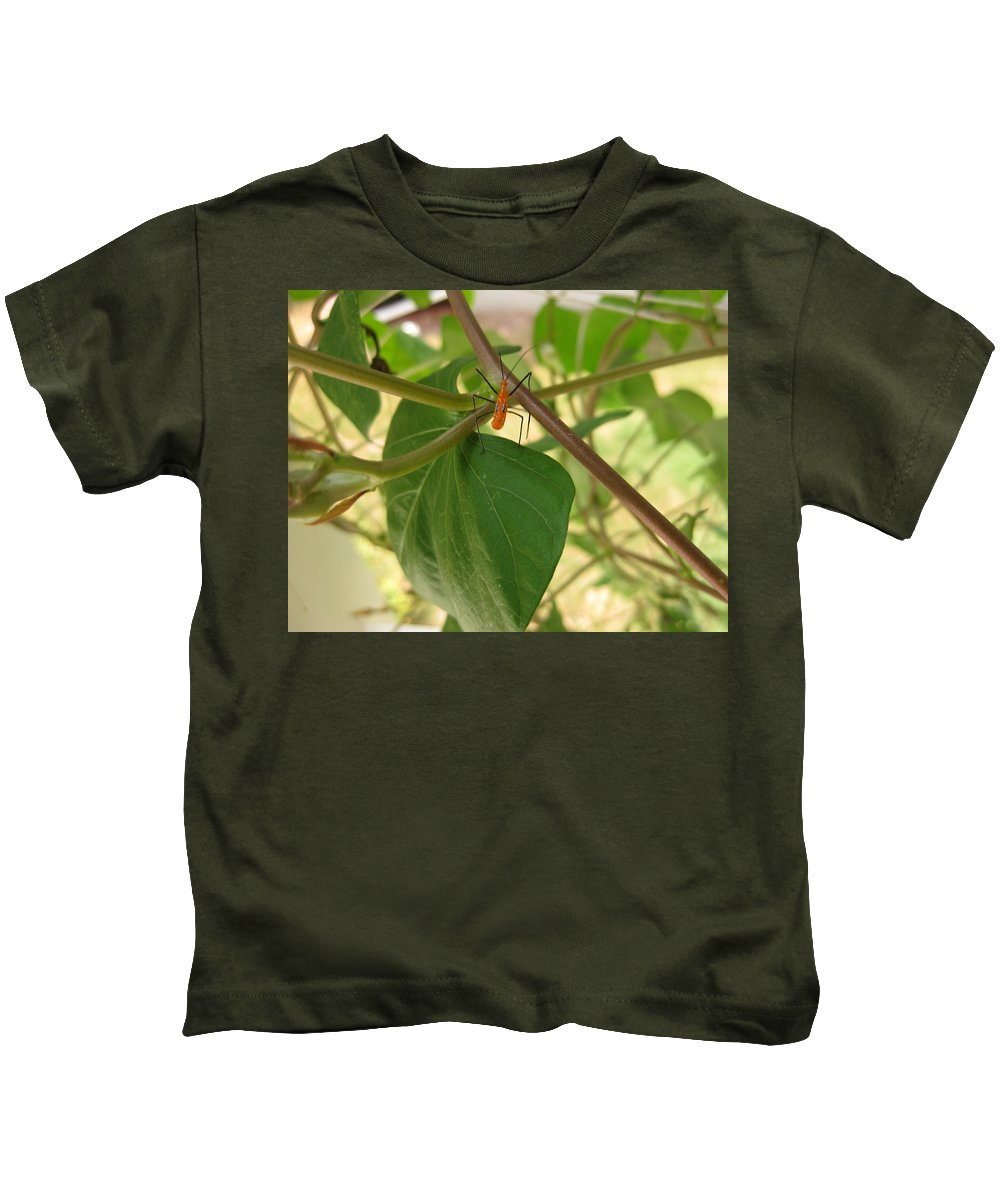 Milkweed Assassin Kids T-Shirt featuring the photograph The Assassin by Cindy Clements