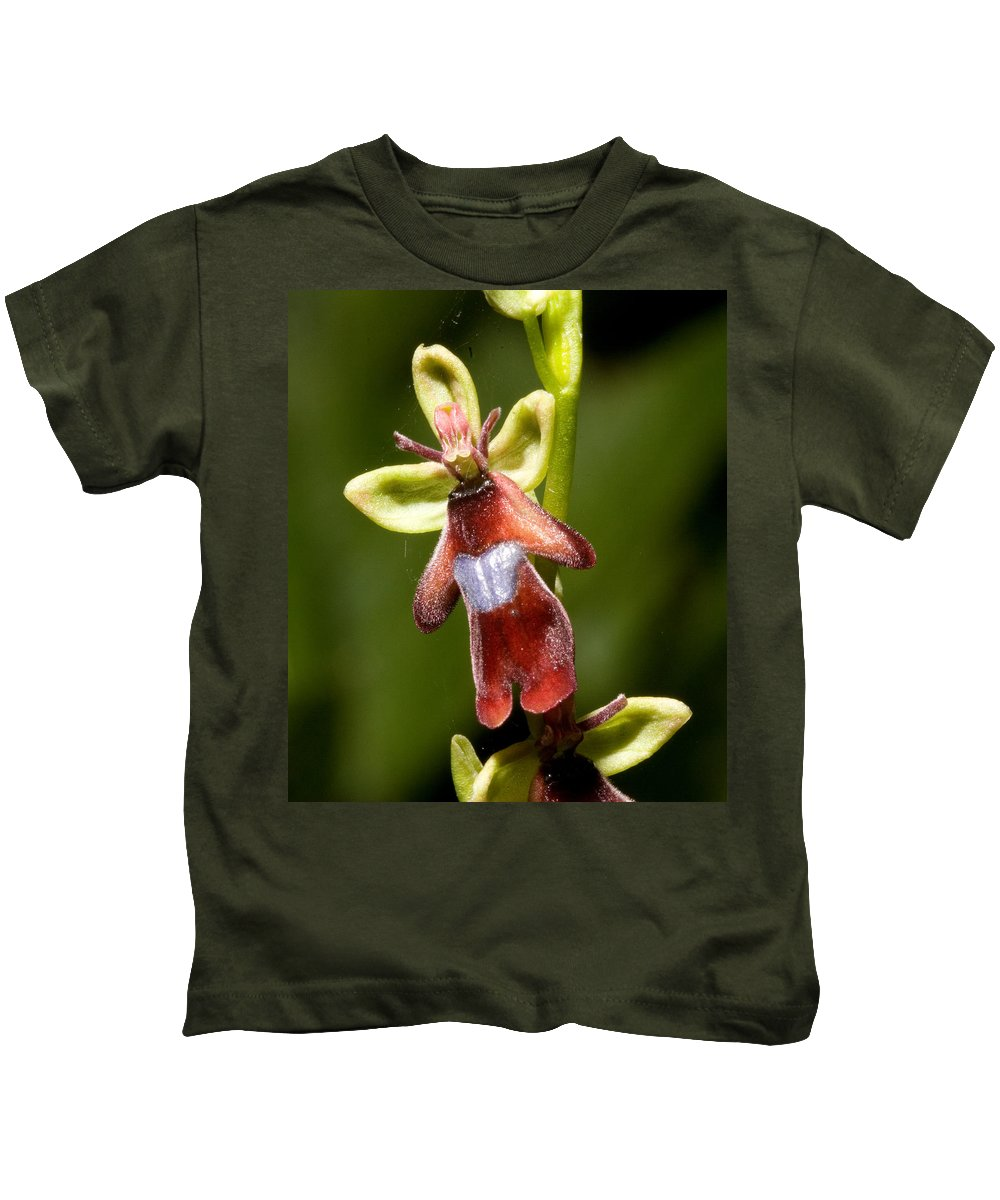 Fly Kids T-Shirt featuring the photograph The Fly Orchid by Bob Kemp