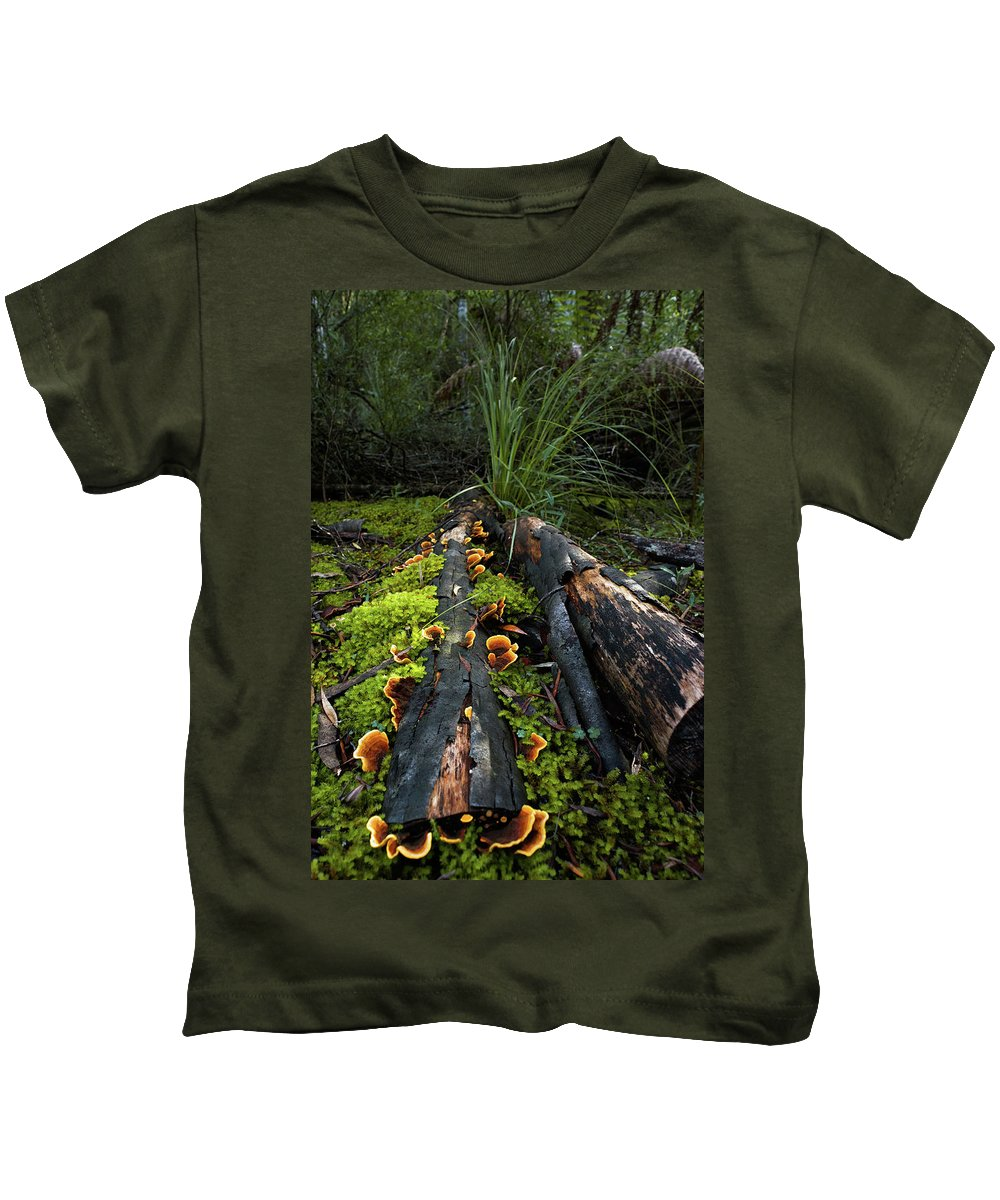 Forest Kids T-Shirt featuring the photograph The Forest Floor by Anthony Davey