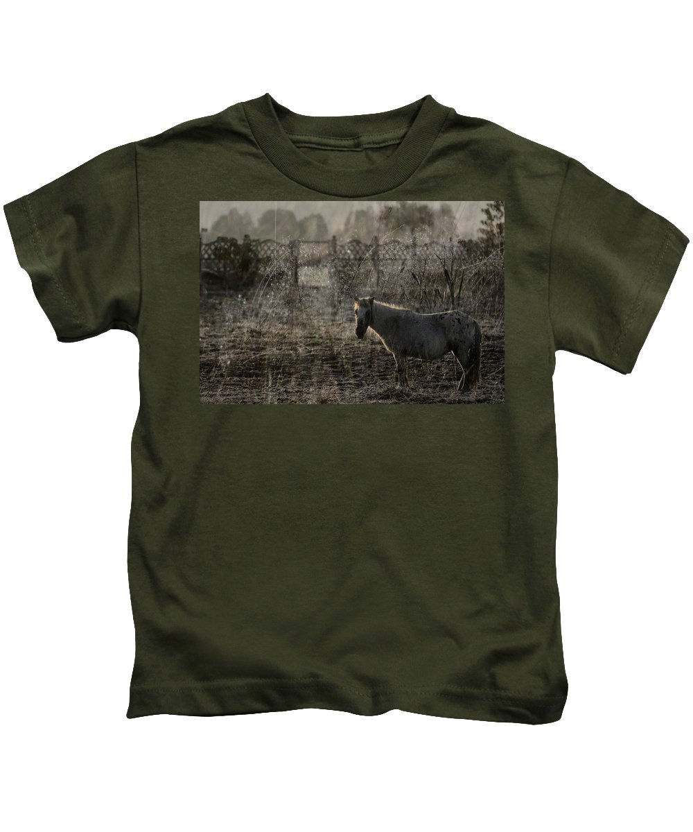 Pferd Kids T-Shirt featuring the photograph The Frosty Morning by Angel Ciesniarska