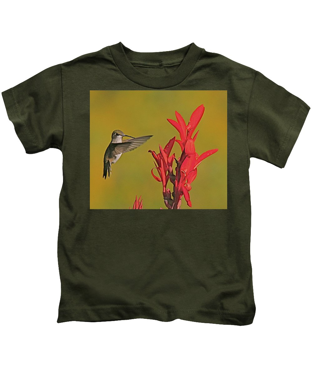 Humming Bird Kids T-Shirt featuring the photograph The Hummer by Robert Pearson