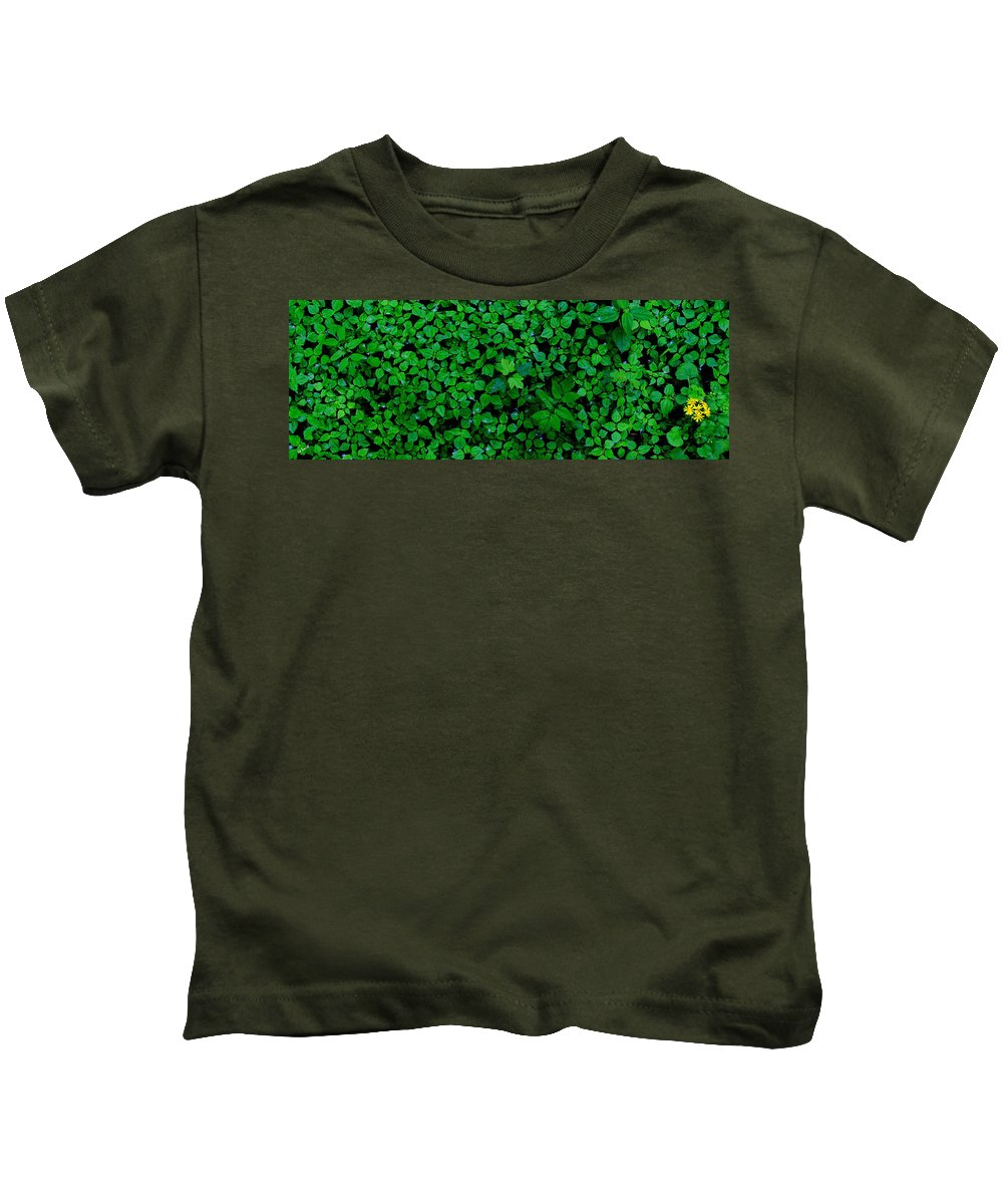 The Minority Kids T-Shirt featuring the photograph The Minority by Ed Smith