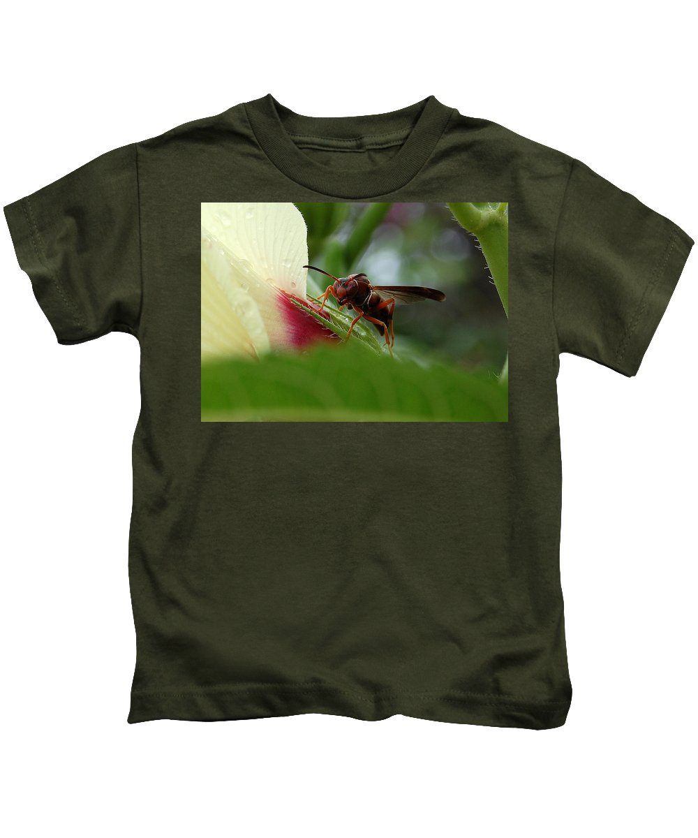 Wasp Kids T-Shirt featuring the photograph The Real Gardener by Robert Meanor
