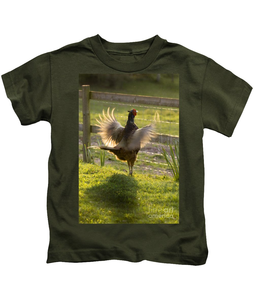Pheasant Kids T-Shirt featuring the photograph The Sun In My Wings by Angel Ciesniarska