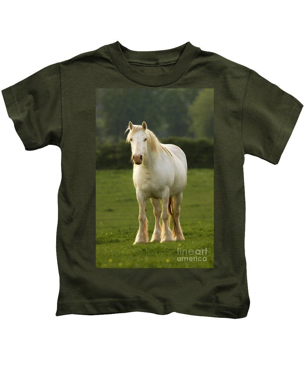 Horse Kids T-Shirt featuring the photograph The White Horse by Angel Ciesniarska