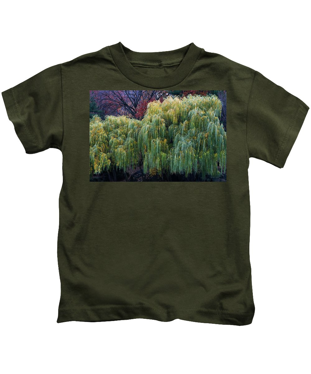 New York City Kids T-Shirt featuring the photograph The Willows Of Central Park by Lorraine Devon Wilke