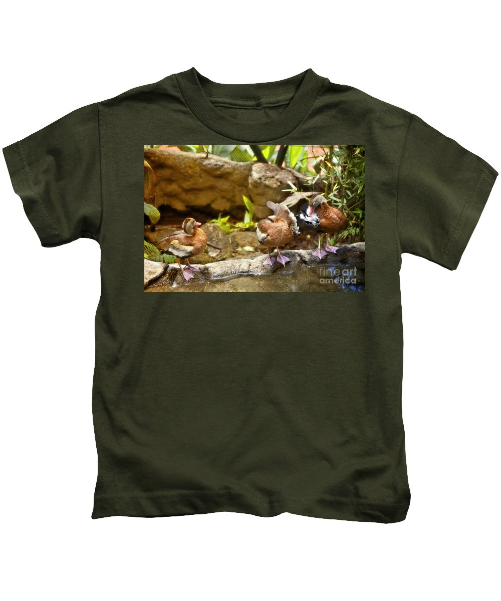 Ducks Kids T-Shirt featuring the photograph Three Ducks by Madeline Ellis