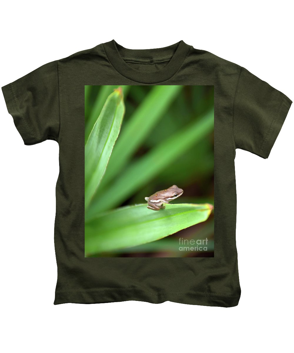 Green Frog Kids T-Shirt featuring the photograph Tiny Tree Frog 01110 by Anna Gibson