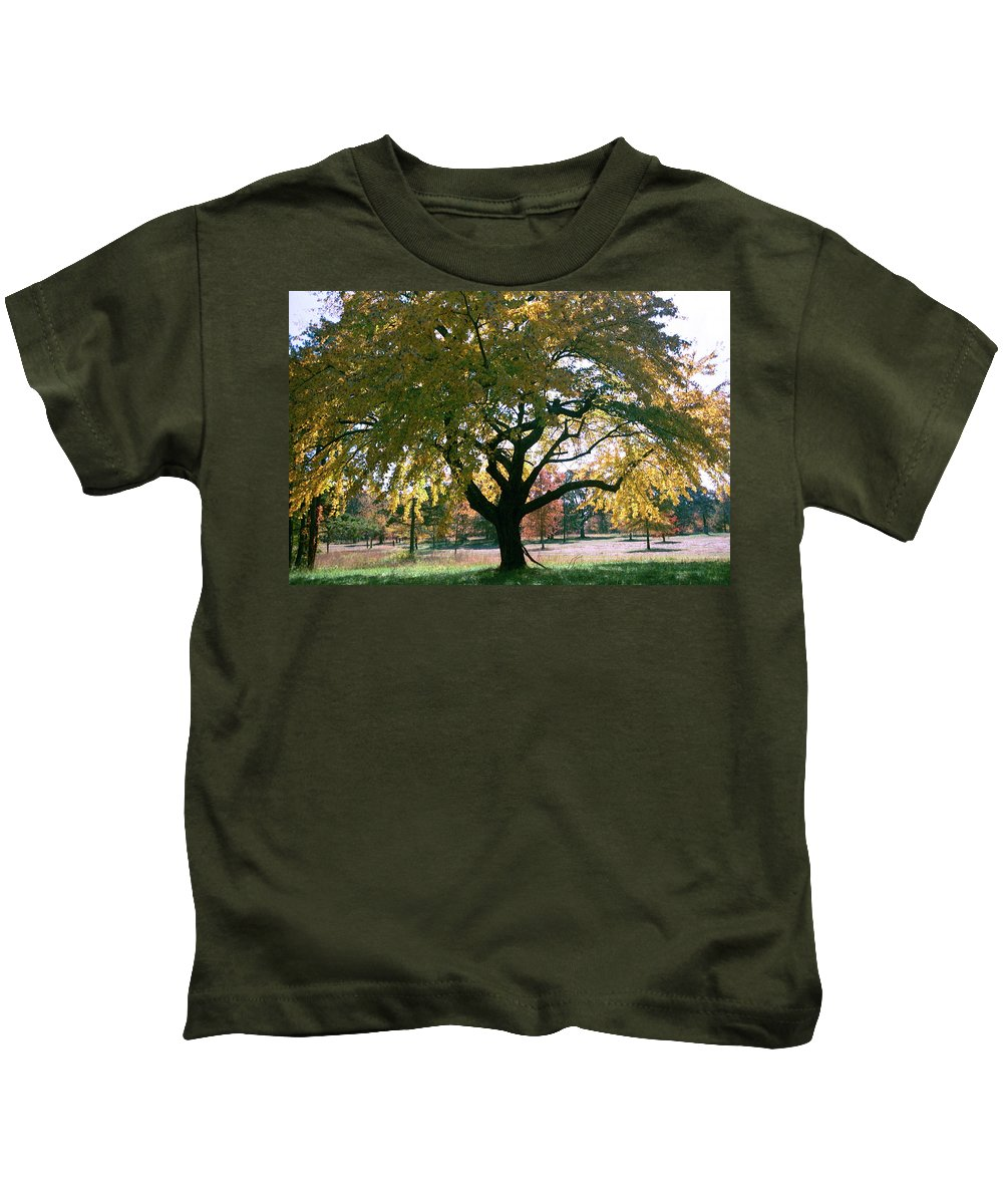 Tree Kids T-Shirt featuring the photograph Tree by Flavia Westerwelle
