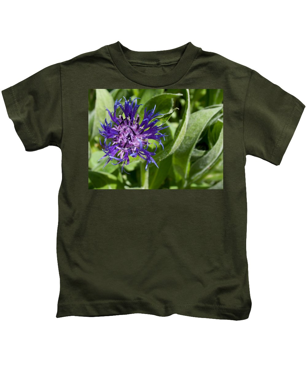 Flowers Kids T-Shirt featuring the photograph Truly Wild by Angus Hooper Iii