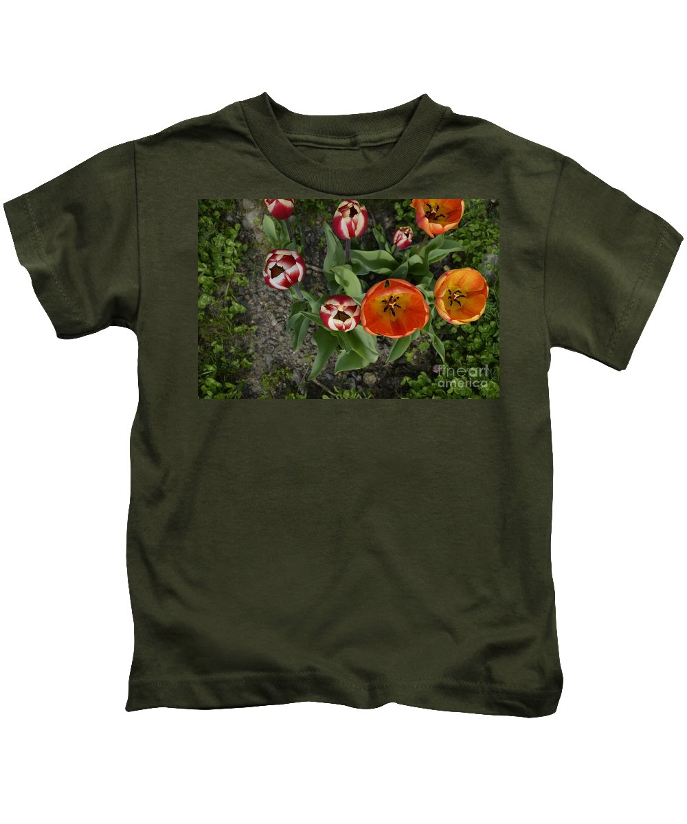 Tulip Cups Kids T-Shirt featuring the photograph Tulips by Shauna Millar
