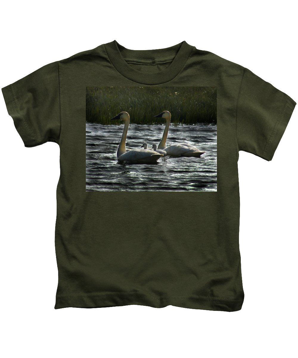 Tundra Swans Kids T-Shirt featuring the photograph Tundra Swans by Anthony Jones