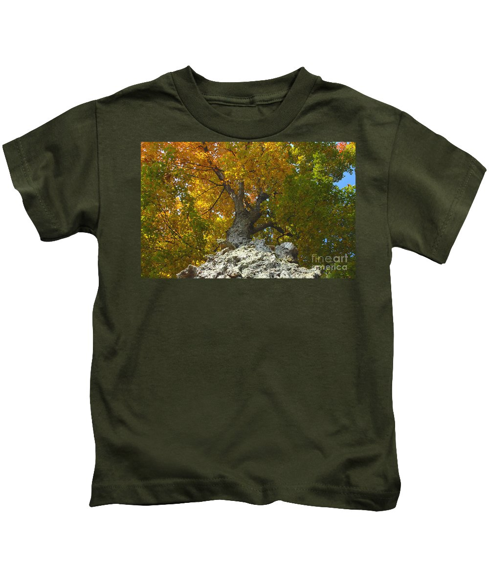 Fall Kids T-Shirt featuring the photograph Turning Colors by David Lee Thompson