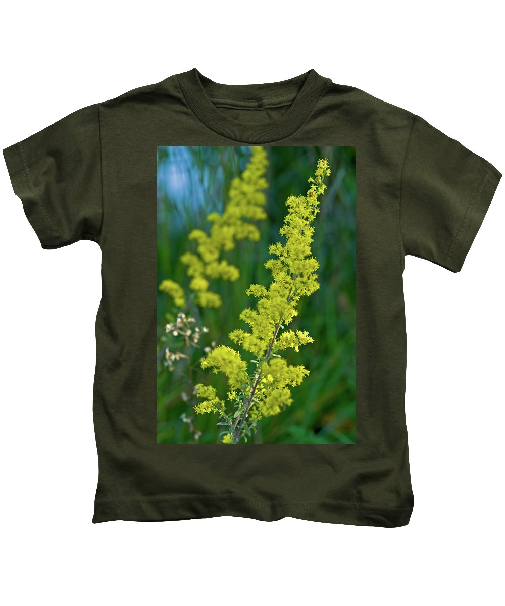 Goldenrod Kids T-Shirt featuring the photograph Twins by Paul Mangold