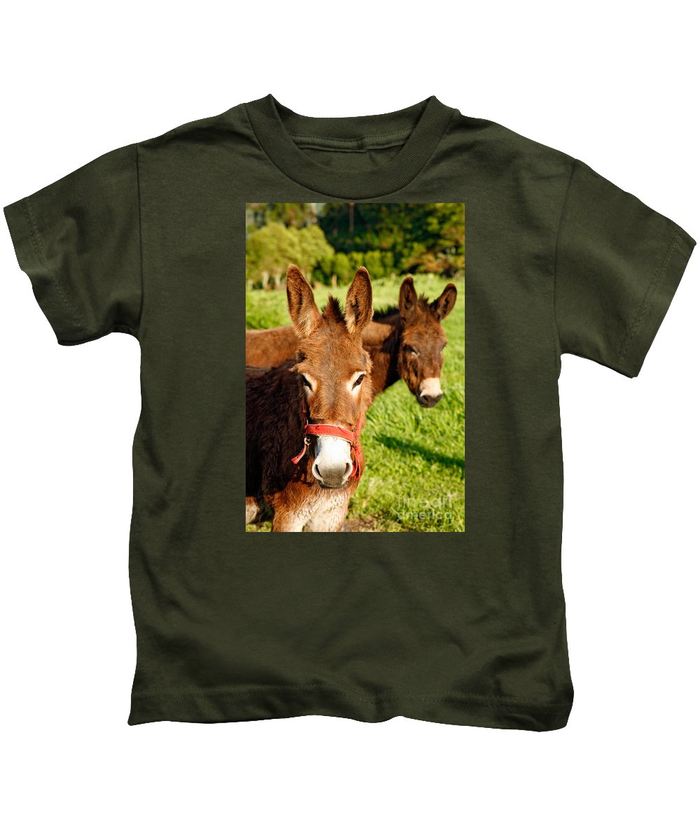 Animals Kids T-Shirt featuring the photograph Two Donkeys by Gaspar Avila