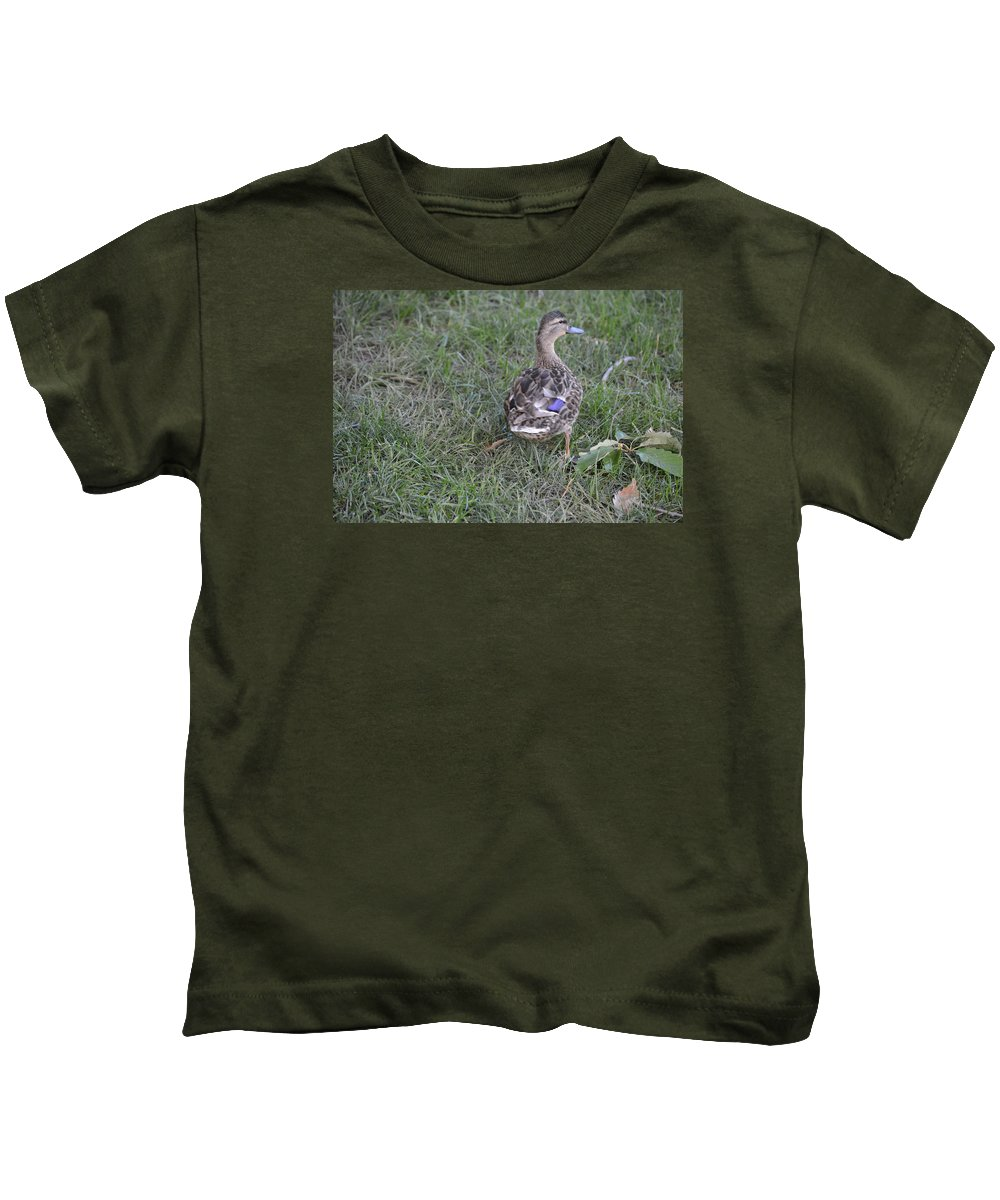 Duck Loose Park Kansas City Kids T-Shirt featuring the photograph Ugly Duckling by Katie LeMae Creative Photography