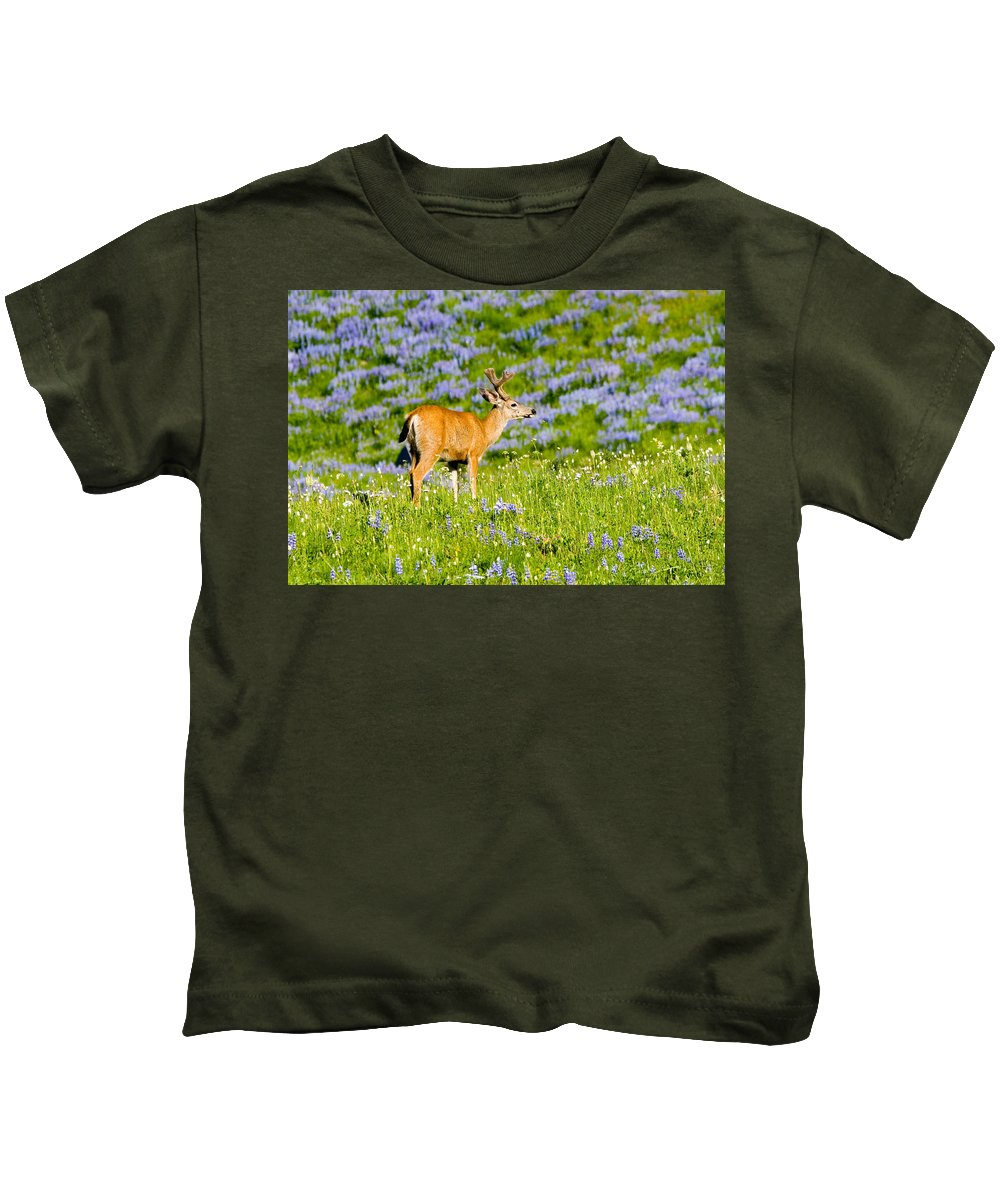 Deer Kids T-Shirt featuring the photograph Velvet On Lupine by Mike Dawson