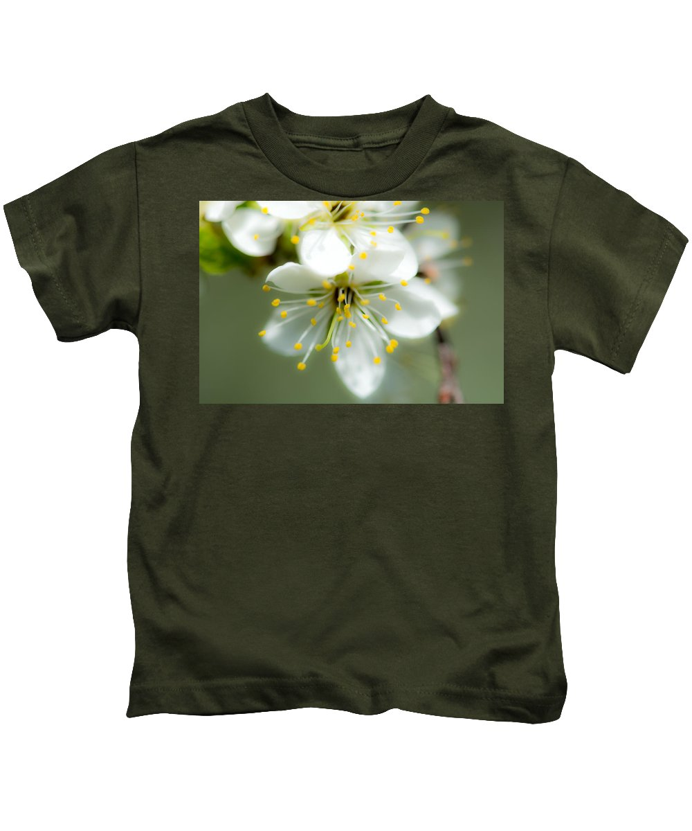 Vermont Kids T-Shirt featuring the photograph Vermont Apple Blossom by Sherman Perry