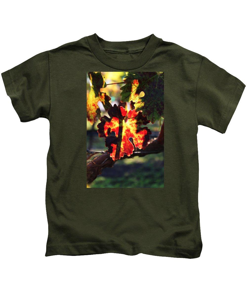 Vineyard Kids T-Shirt featuring the photograph Vineyard 26 by Xueling Zou