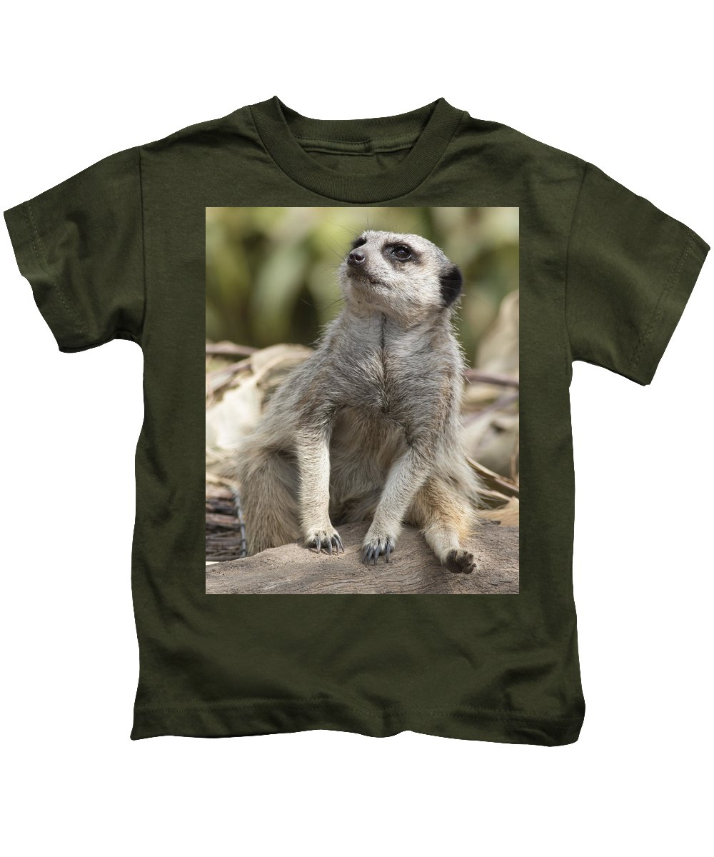 Animal Kids T-Shirt featuring the photograph Watch Out From Sky by Masami Iida