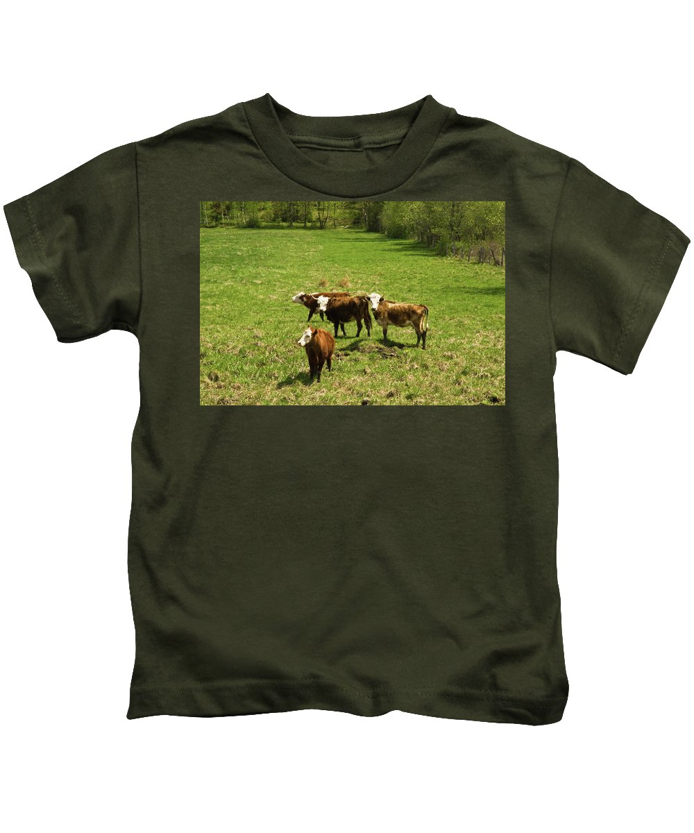 vermont Images Kids T-Shirt featuring the photograph What Are You Looking At by Paul Mangold