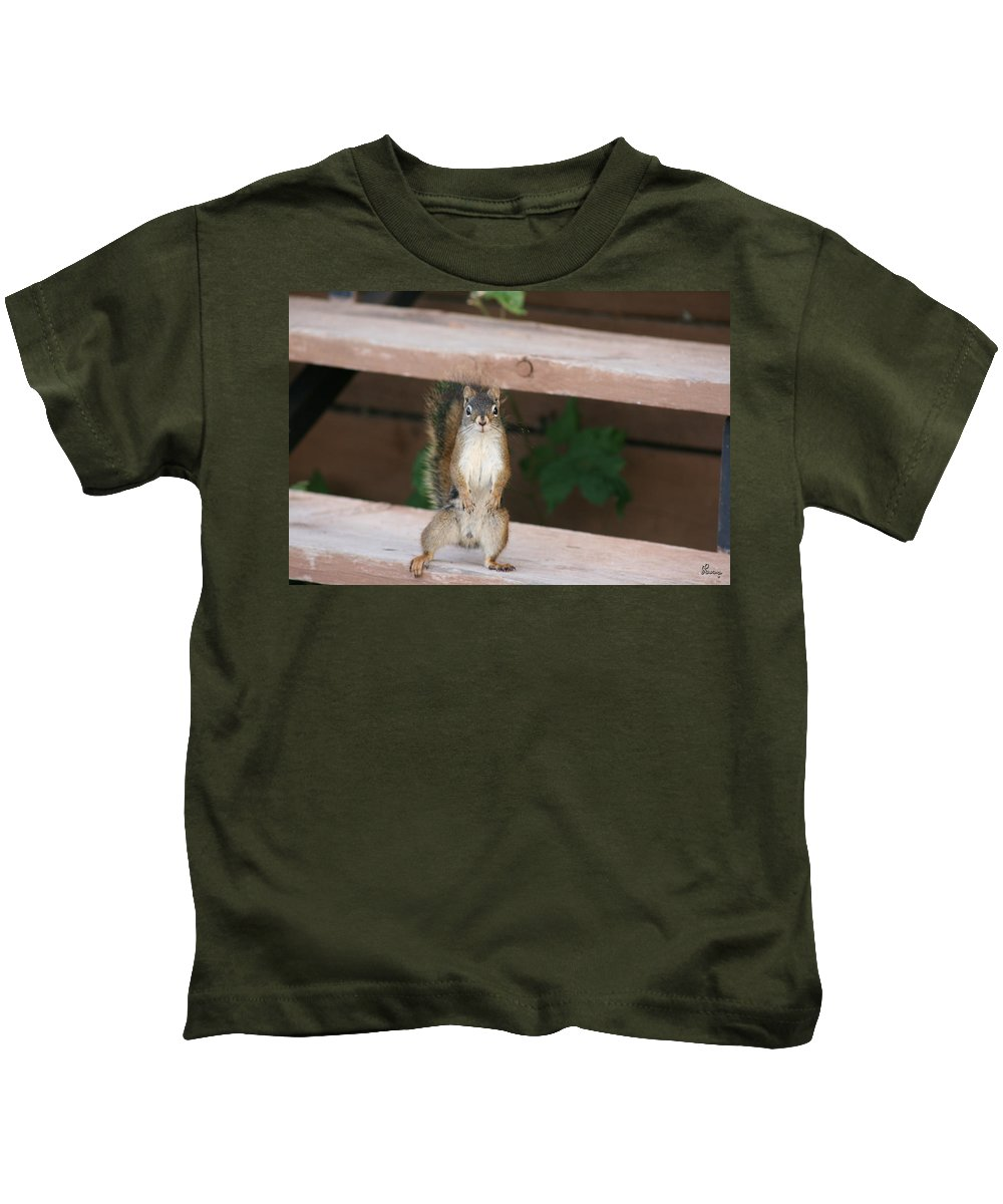 Squirrel Mother Nature Wild Animal Cute Dancing Kids T-Shirt featuring the photograph What You Lookin At by Andrea Lawrence