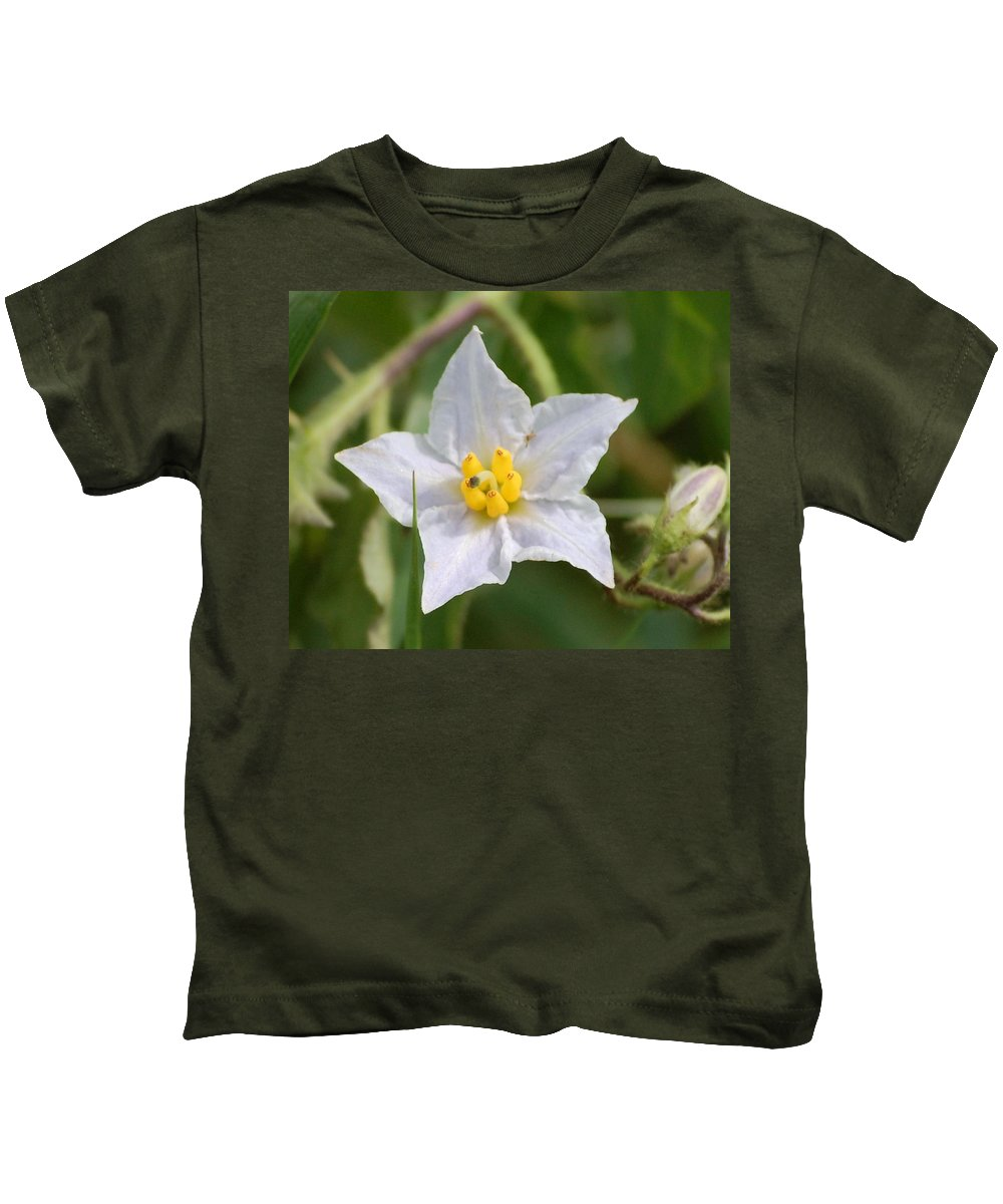 Digital Photo Kids T-Shirt featuring the photograph White Star by David Lane