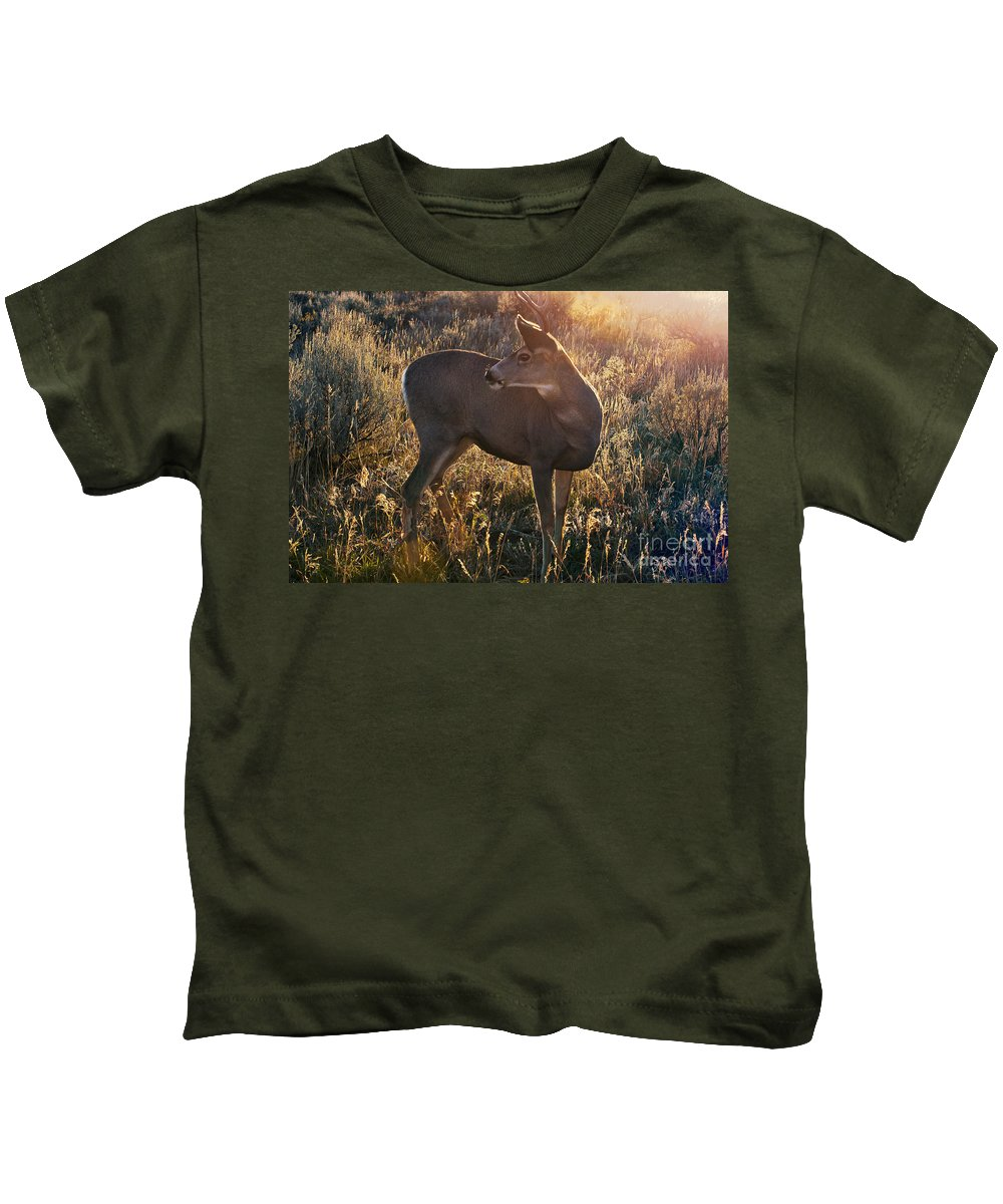 Jackson Hole Kids T-Shirt featuring the photograph Who Is Back There by Bob Phillips