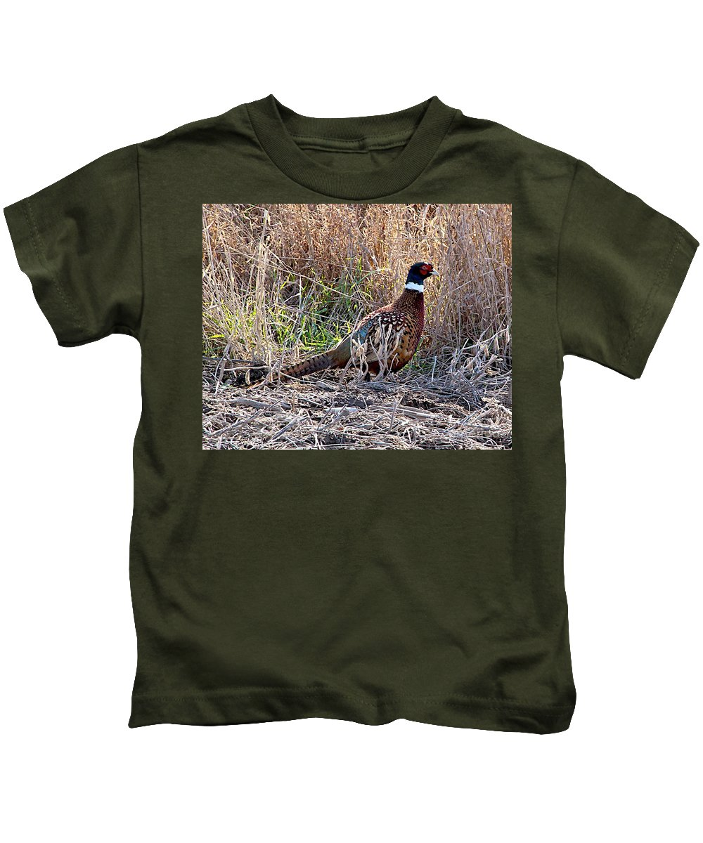 Blue Bird Kids T-Shirt featuring the photograph Wild Ring Neck Phesant by Robert Pearson