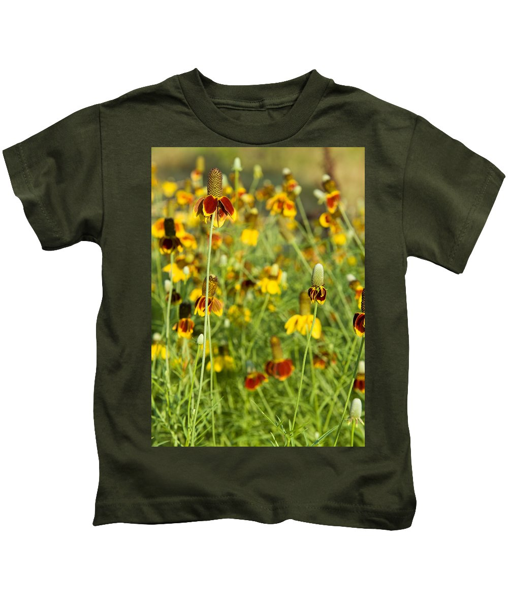 Wildflower Kids T-Shirt featuring the photograph Wildflowers Four by Stephen Anderson