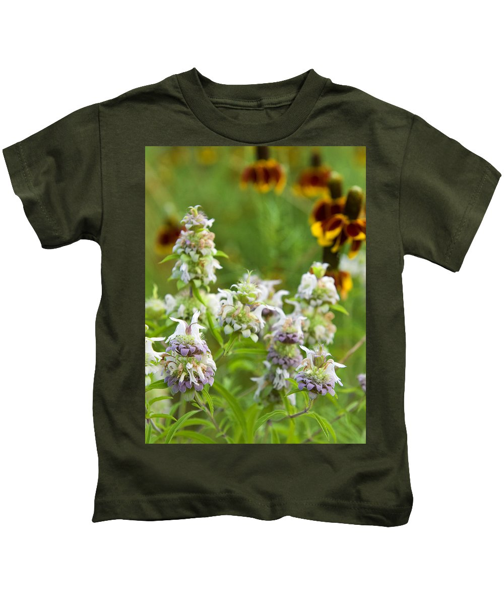 Wildflower Kids T-Shirt featuring the photograph Wildflowers Three by Stephen Anderson