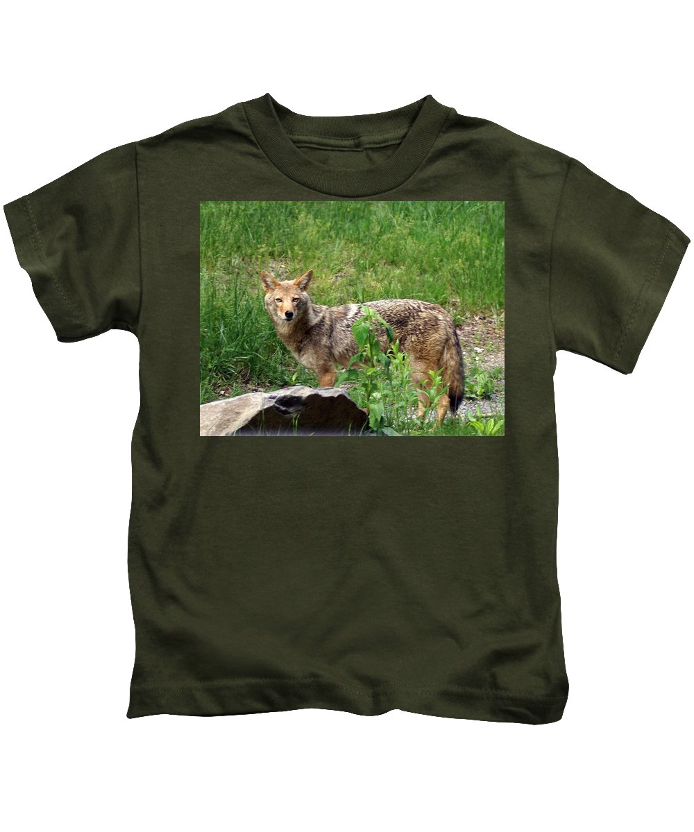 Cpyote Kids T-Shirt featuring the photograph Wiley Coyote by Marty Koch