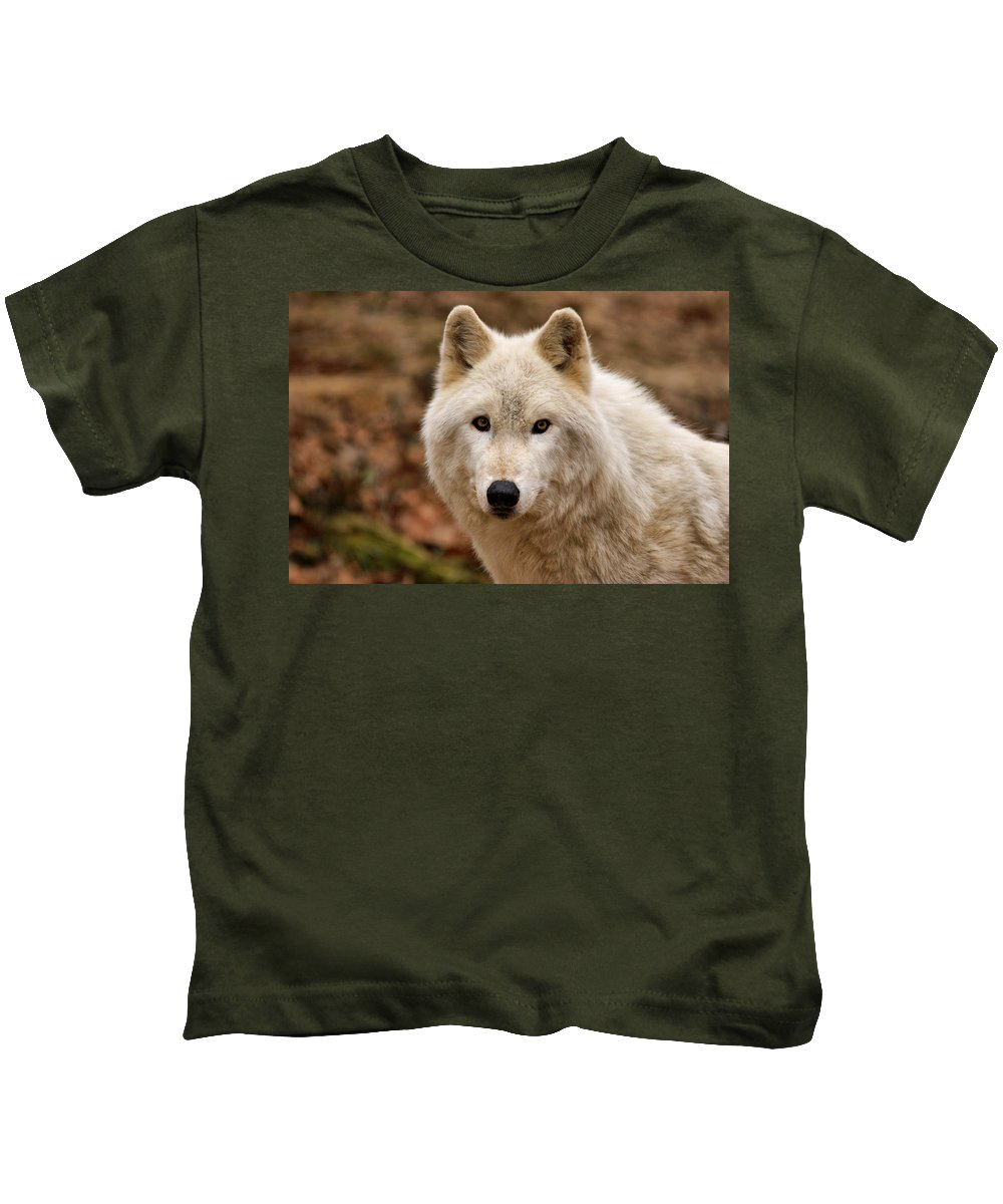 Wolf Kids T-Shirt featuring the photograph Wolf Watching by Sandy Keeton