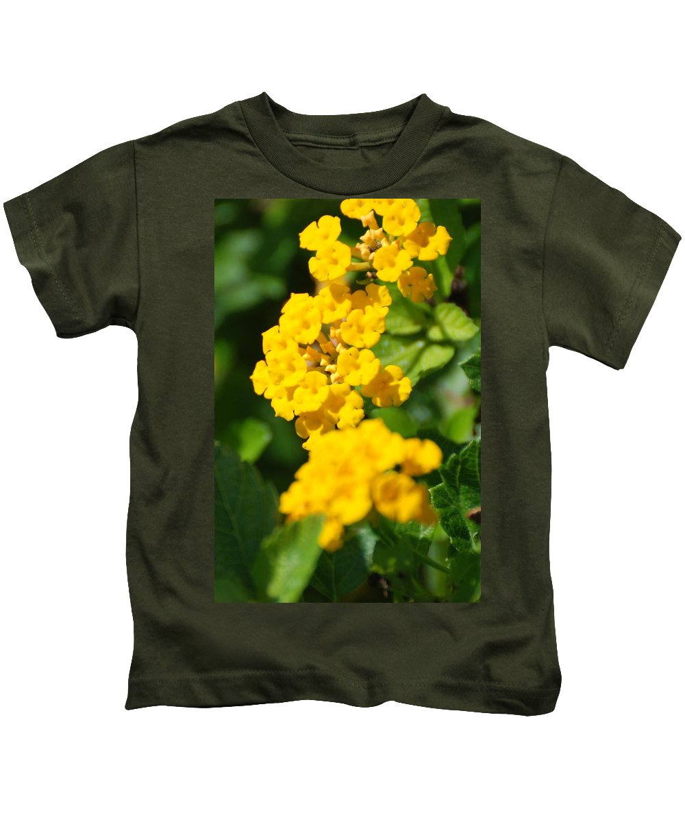 Flowers Kids T-Shirt featuring the photograph Yellow Blooms by Rob Hans