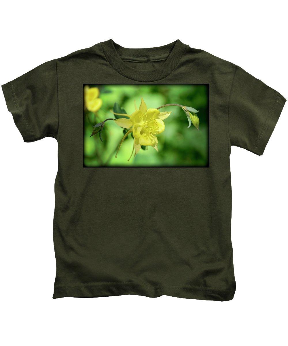 Yellow Columbine Flower Kids T-Shirt featuring the photograph Yellow Columbine by Saija Lehtonen