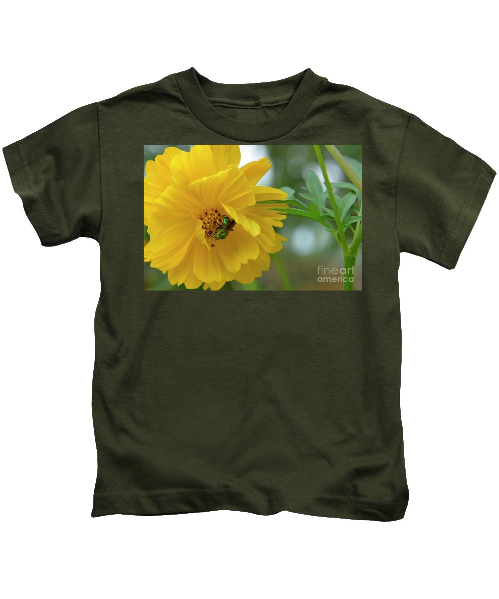 Cosmos Kids T-Shirt featuring the photograph Yellow Cosmos Flower by Olga Hamilton