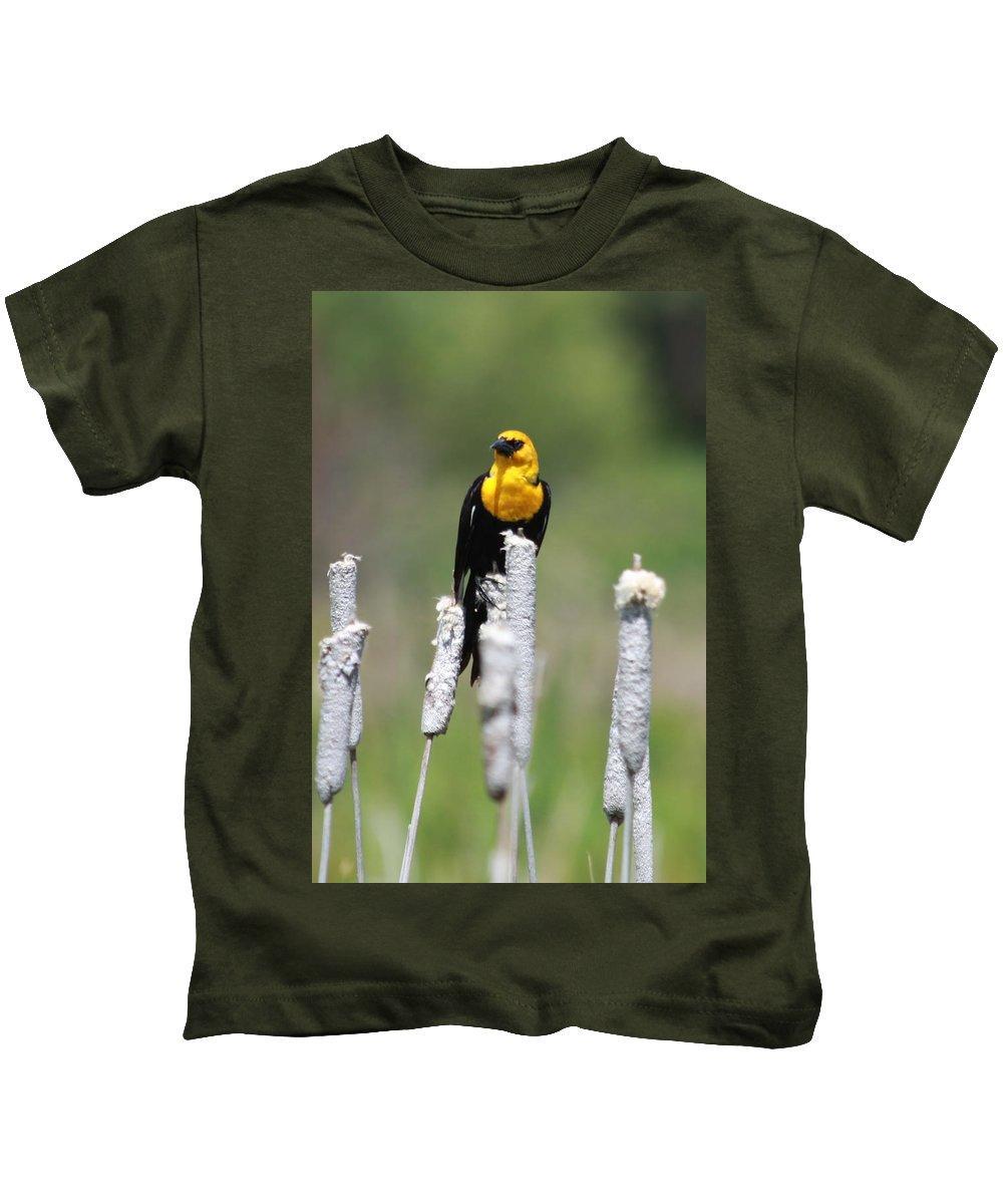 Wild Kids T-Shirt featuring the photograph Yellow-headed Blackbird by Karon Melillo DeVega