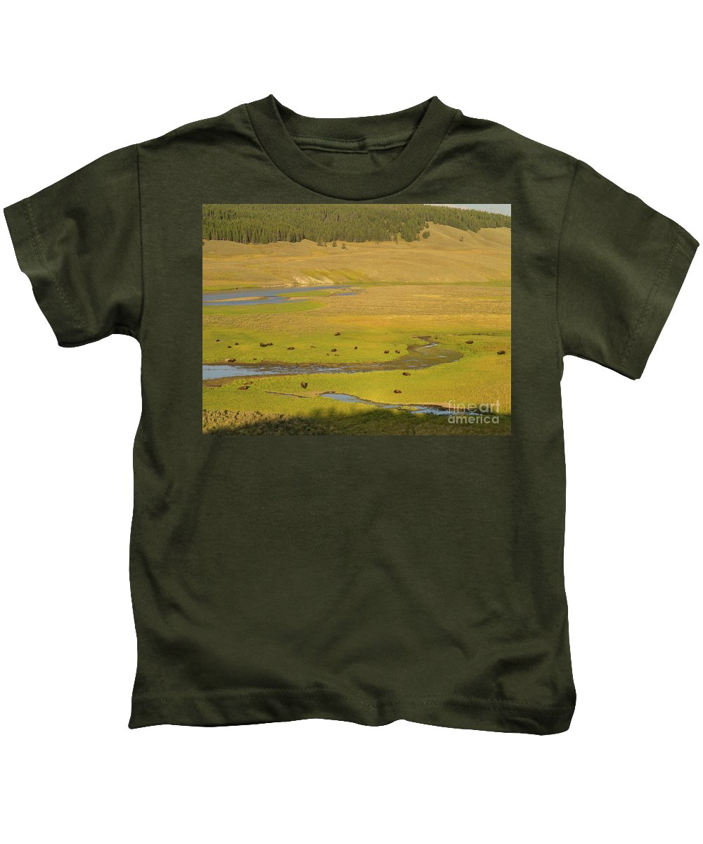 Wyoming Kids T-Shirt featuring the photograph Yellowstone Bison 2 by Tracy Knauer