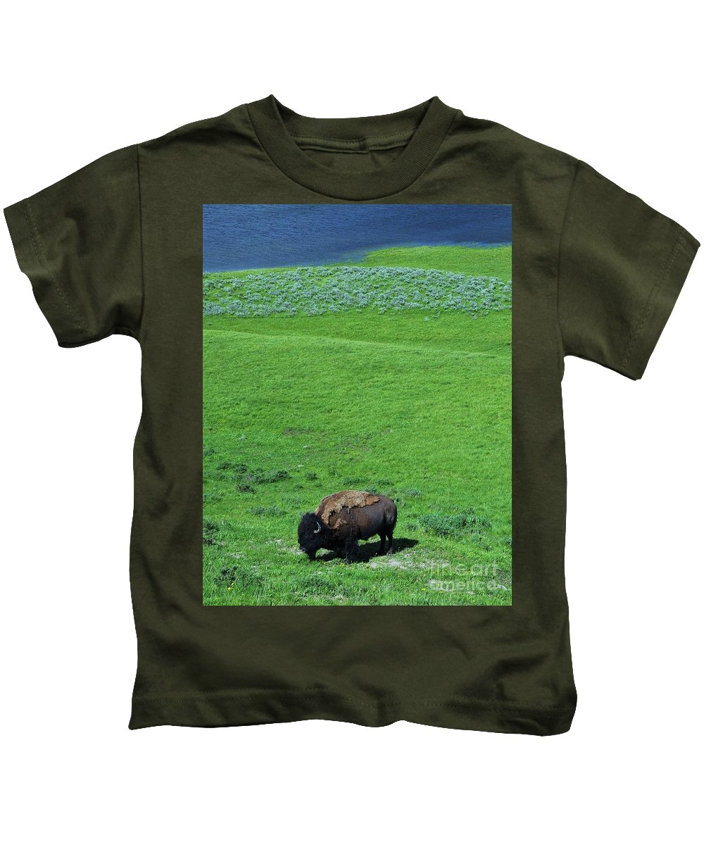Yellowstone Bison Kids T-Shirt featuring the photograph Yellowstone Bison by Allen Beatty