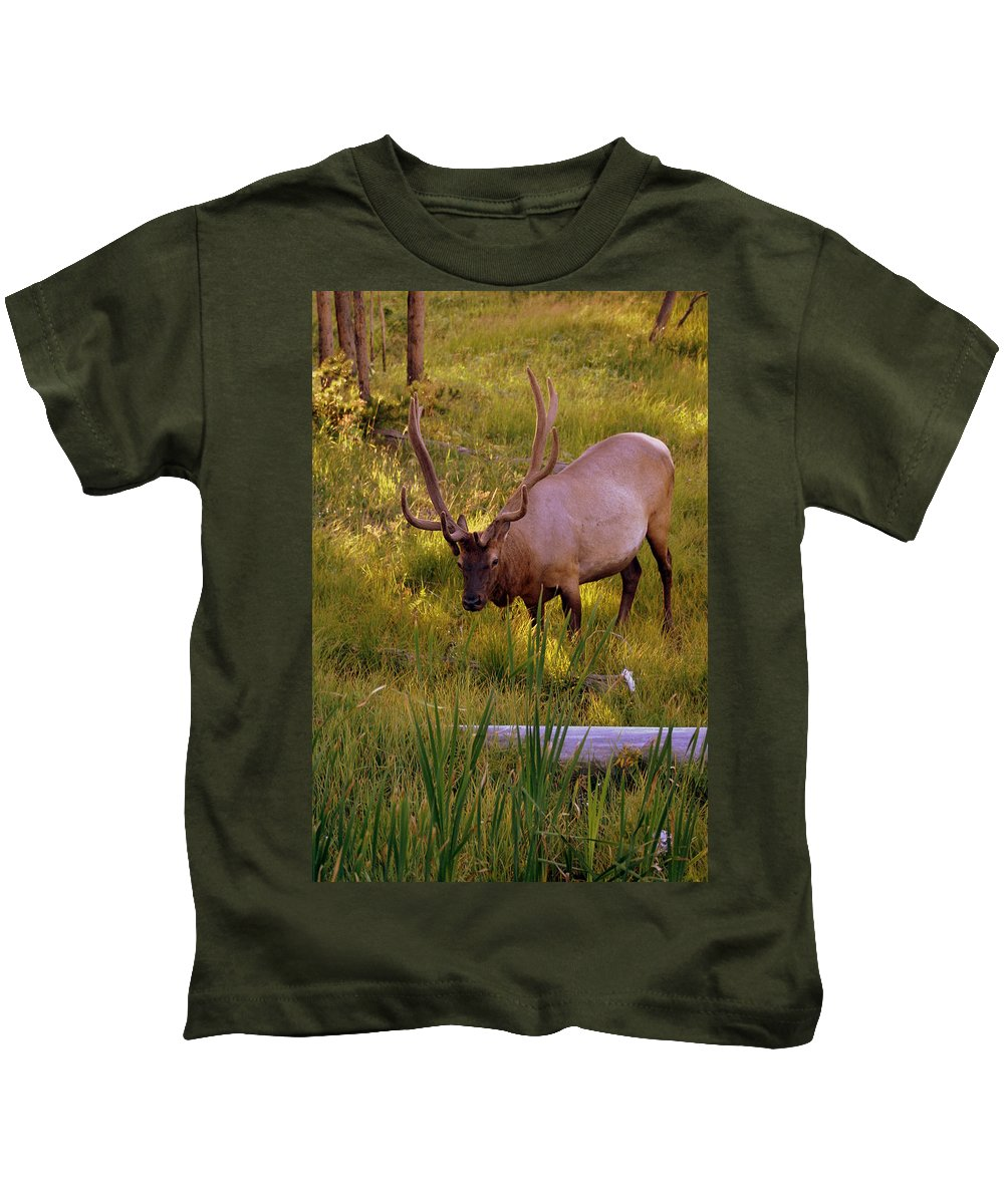 Elk Kids T-Shirt featuring the photograph Yellowstone Bull by Marty Koch