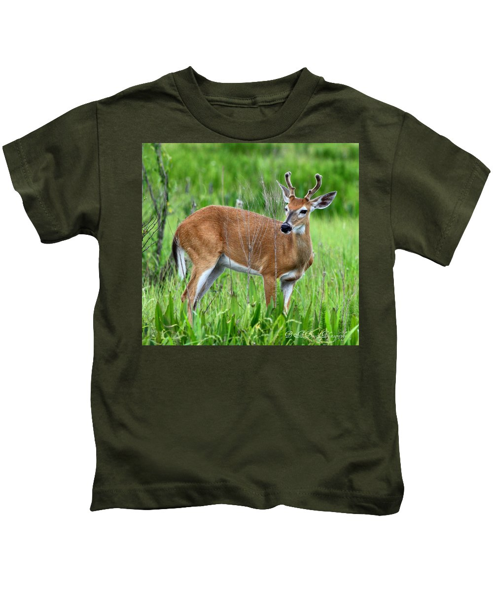 White Tail Deer Kids T-Shirt featuring the photograph Young Buck by Barbara Bowen