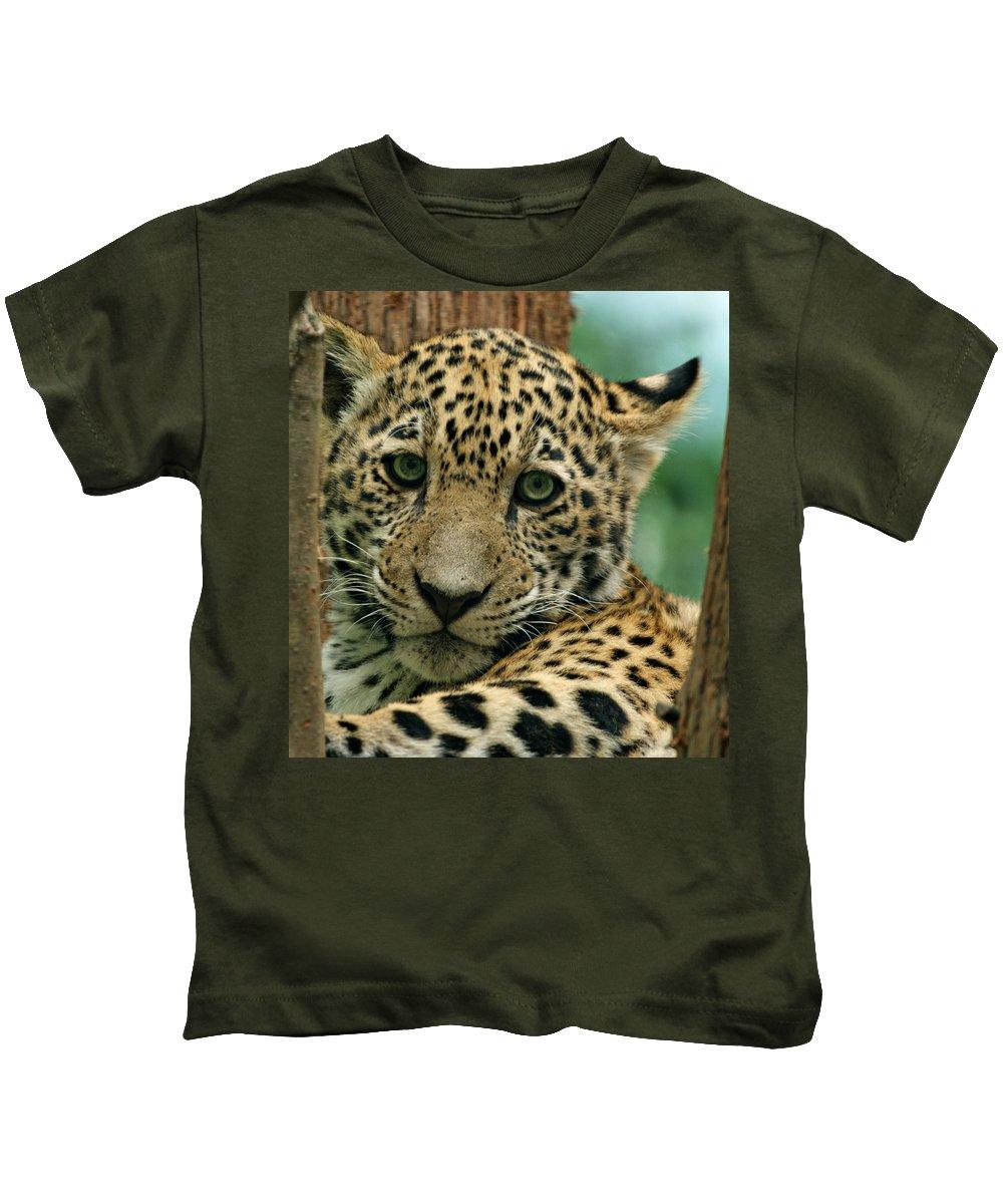Jaguar Kids T-Shirt featuring the photograph Young Jaguar by Sandy Keeton